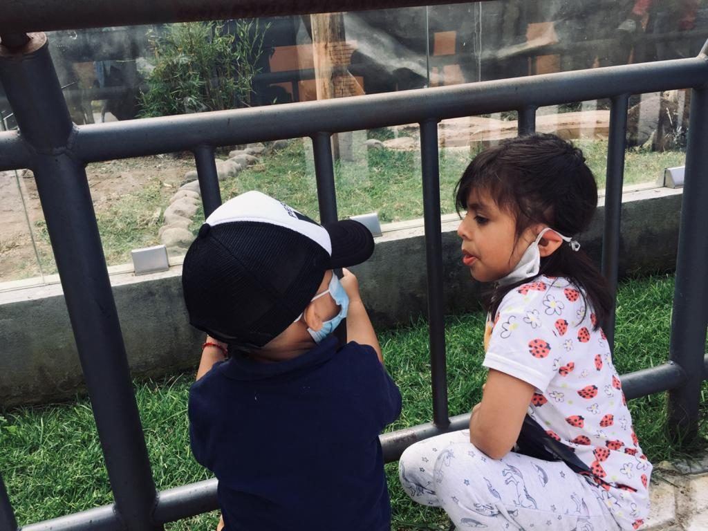 Abarrotan zoológico de Zacango pese a restricciones por pandemia - Oct 18, 2020