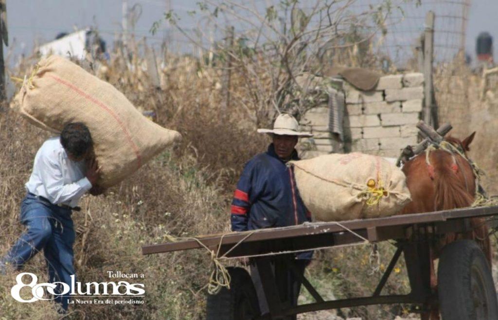 Inversión millonaria para el campo mexiquense durante 2020 - Mar 9, 2021
