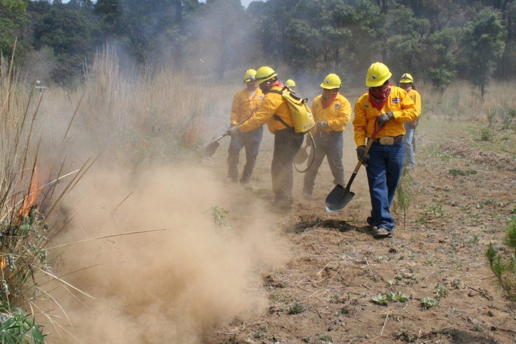 Reportaron más de 500 incendios forestales en el Edoméx - Mar 22, 2021