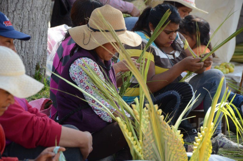 Artesanos de Toluca esperan buenas ventas de palmas el próximo Domingo de Ramos - Mar 26, 2021