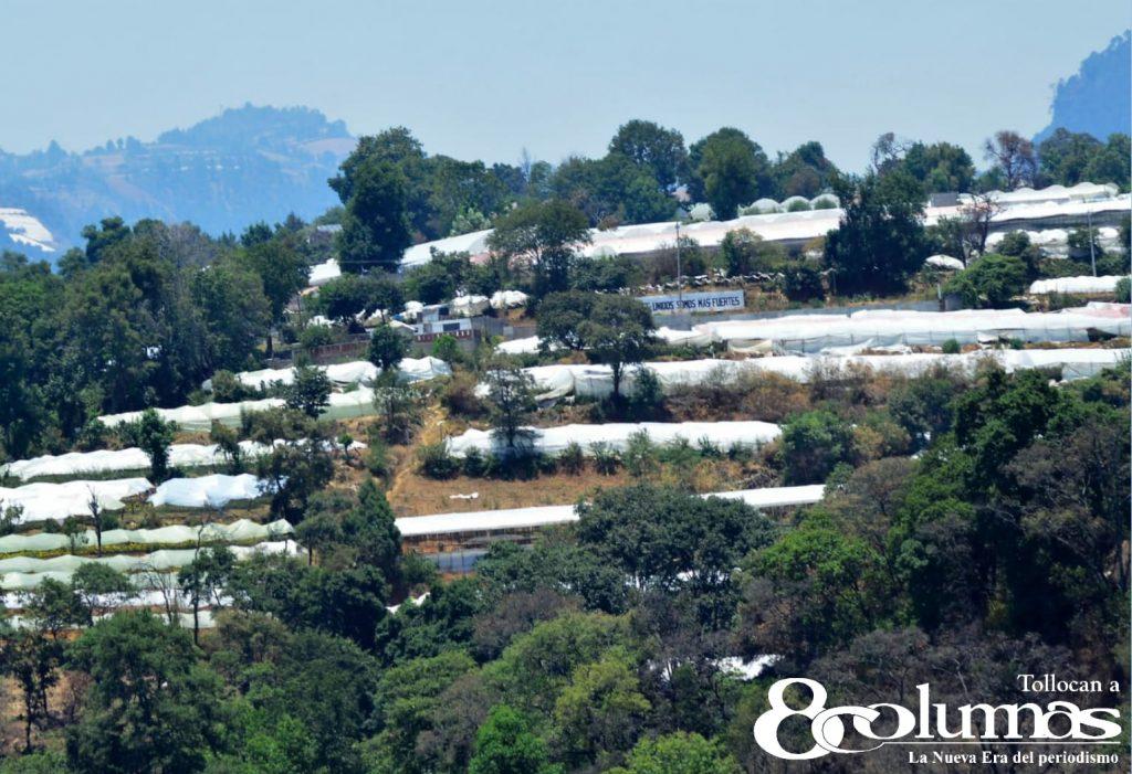 Villa Guerrero se recupera tras efectos de pandemia - May 10, 2021